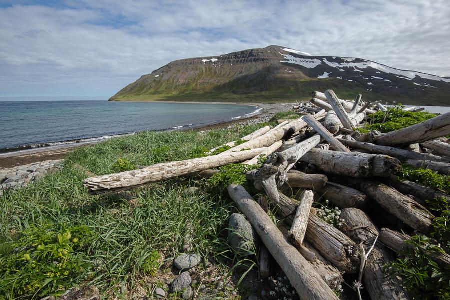plage du nord en Islande