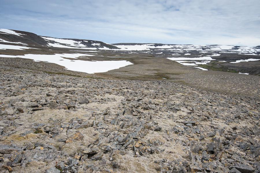 plateau et pierrier en Islande