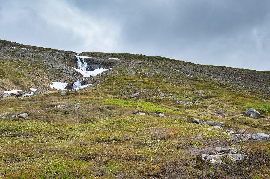 cascade et toundra arctique en Islande