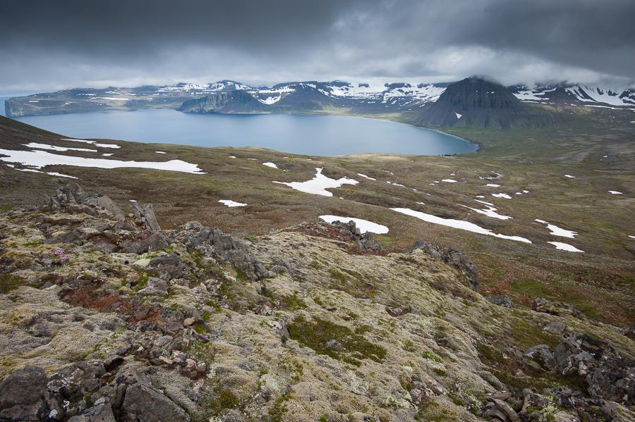 baie d'haelavik, trekking dans le Hornstrandir en Islande