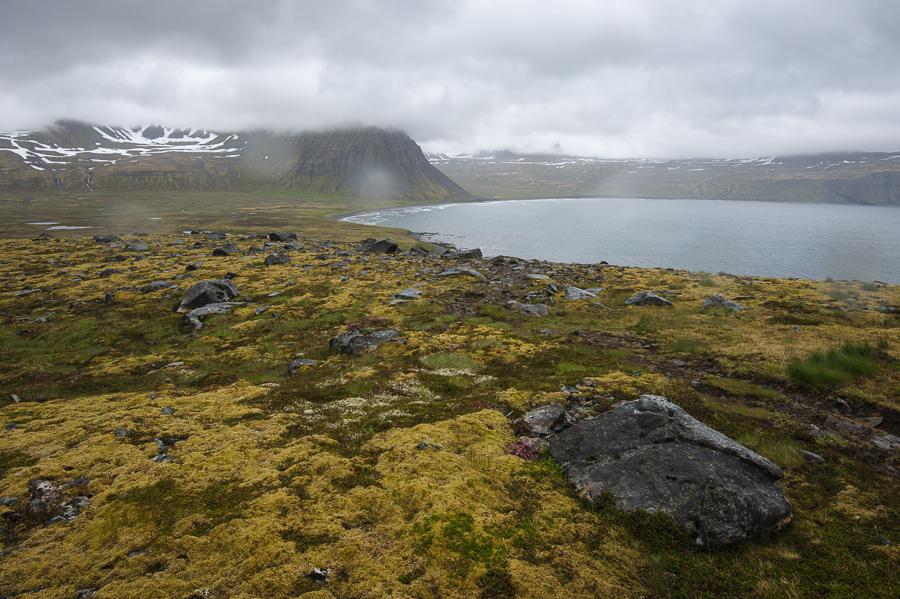 baie d'Haelavik dans le hornstrandir sous la pluie
