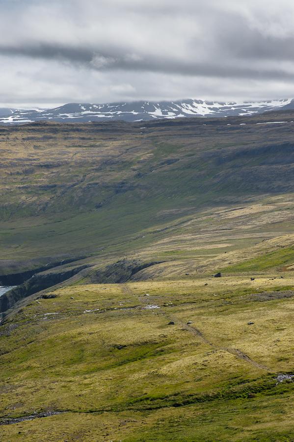 paysage de la réserve naturelle d'Hornstrandir