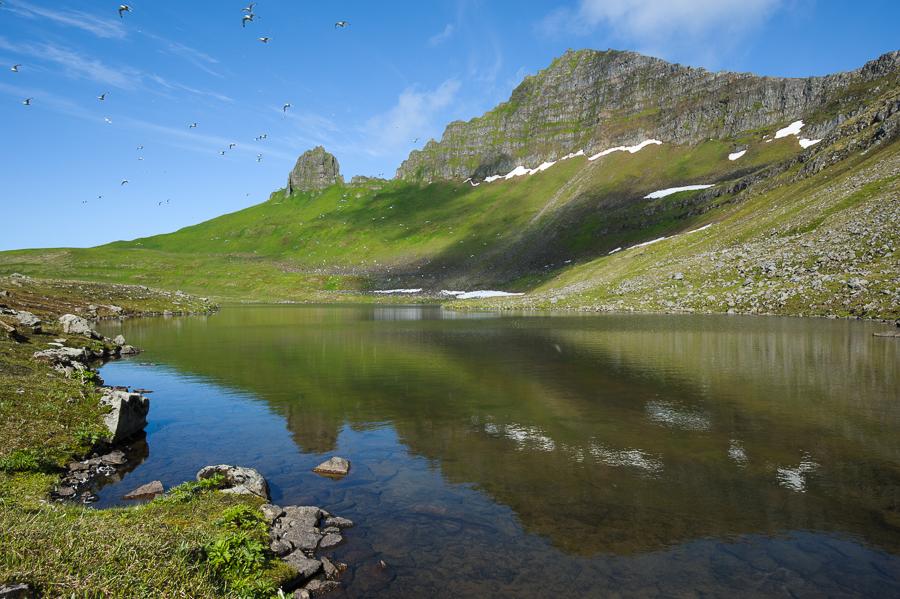 middalsvatn et falaise d'Hornbjarg en Islande