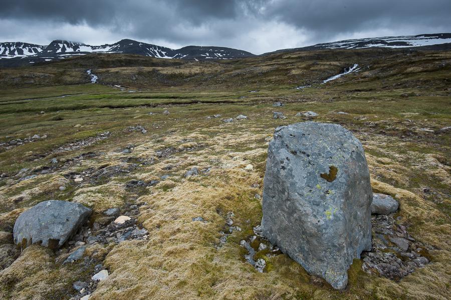 paysage de lande en Islande