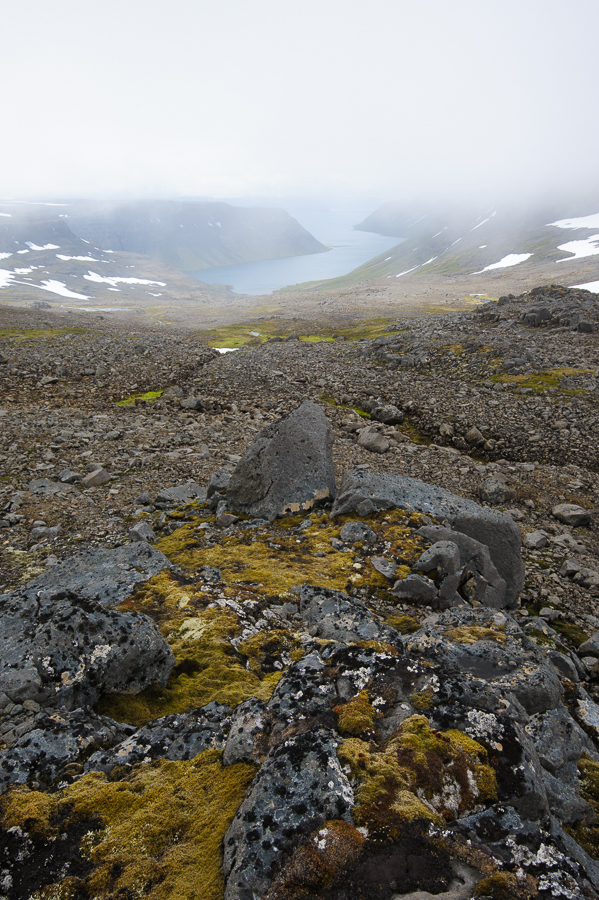 Hornstrandir dans la Brume en Islande