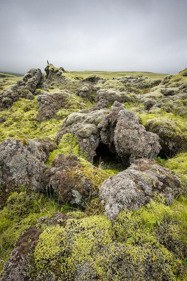 champ de lave en Islande