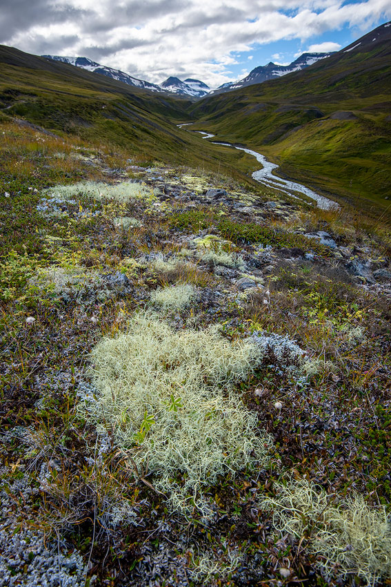 Vallée de Glerardalur , près d'Akureyri en Islande