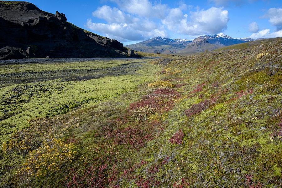 couleurs d'automne à thorsmörk en Islande