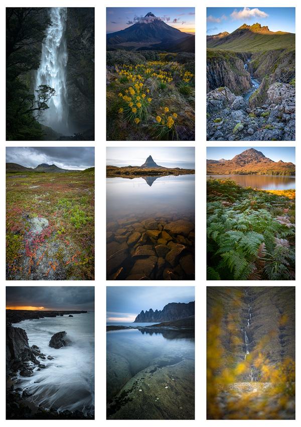 exposition les îles rugissantes photo
