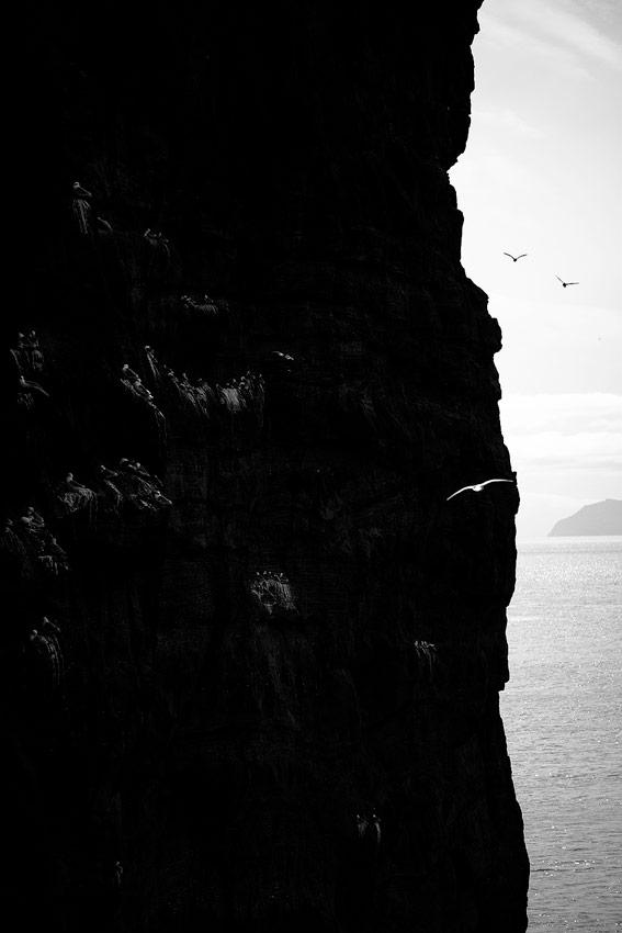 photographie noir et blanc d'une falaise sur les Îles féroé