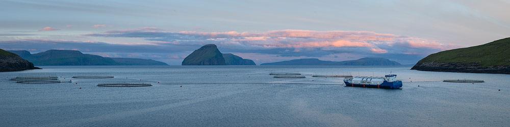 élevage de saumon près de Sandavagur sur les Îles Féroé
