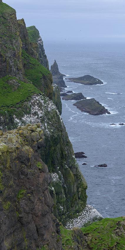 falaises des îles féroé