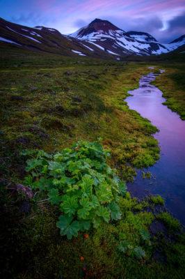vallée de Glerardalur pres d'Akureyri dans le nord de l'Islande