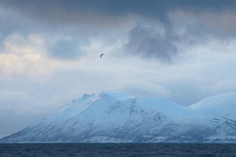 Norvège en hiver – Les Alpes de Lyngen (1/2)