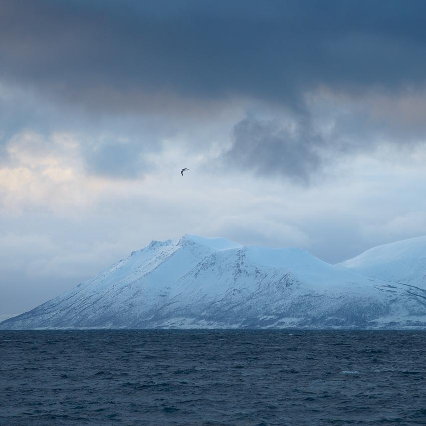 côte de la norvège en hiver