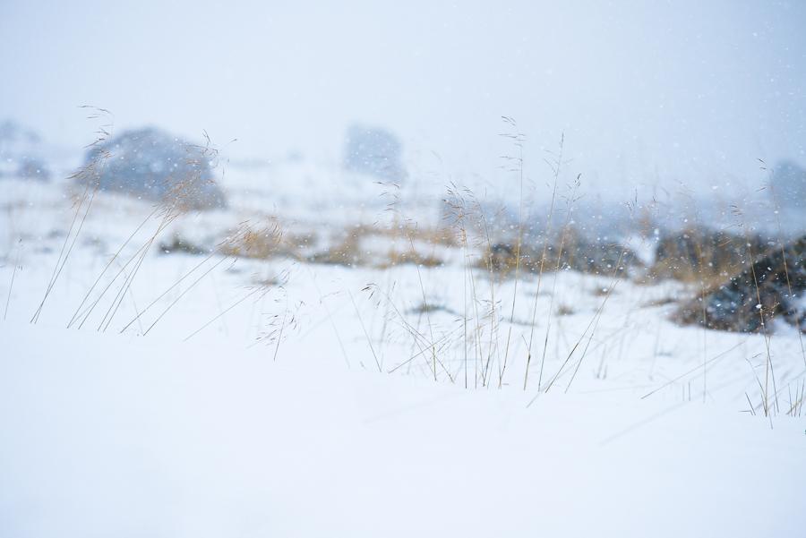 Bord de mer en hiver en Norvège